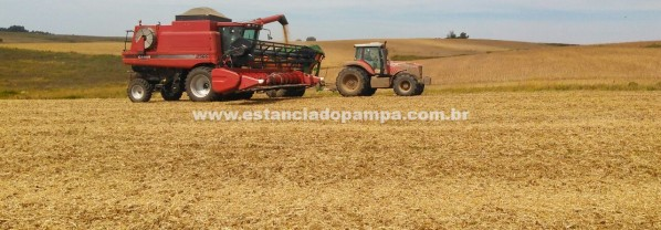 FAZENDA À VENDA NO RS COM 2500 HA